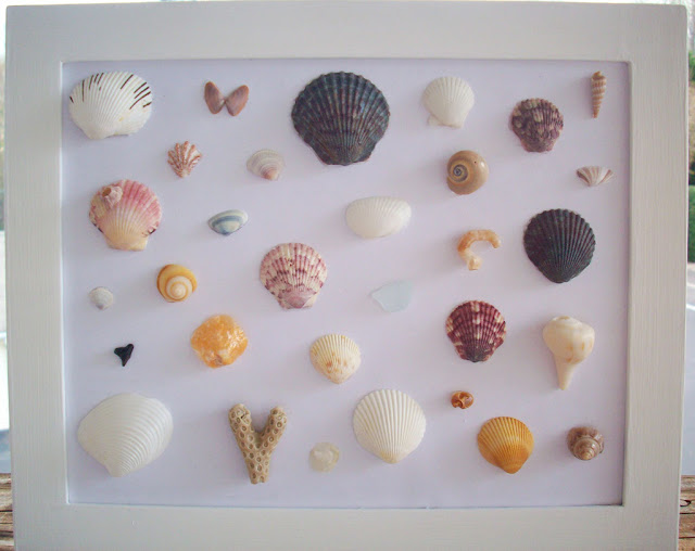 shell art frame