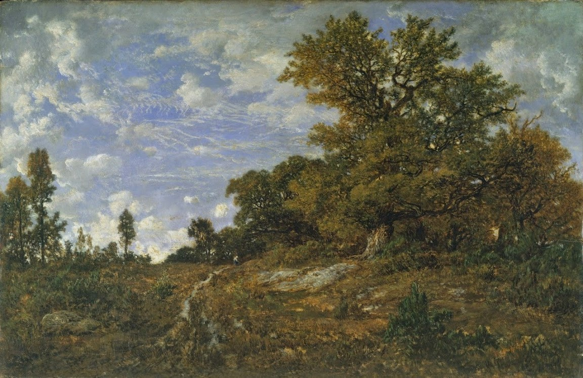 Théodore Rousseau - The Edge of the Woods at Mont Gerard, Fontainebleau Forest