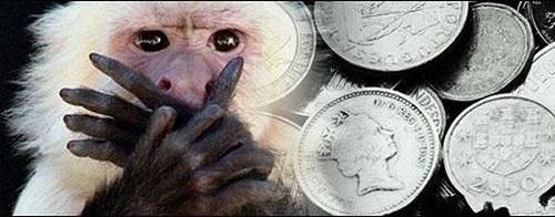 Деньги, обезьяны и проституция...