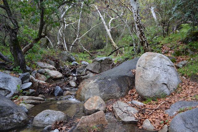 good flow in Mill Creek