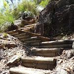 Steep winding track south of Washtub Creek (353612)