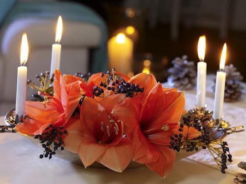 coroa do advento com flores naturais