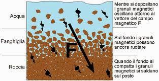 Spiegare brevemente come funziona la datazione del radiocarbonio