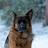 Tony Allen avatar image