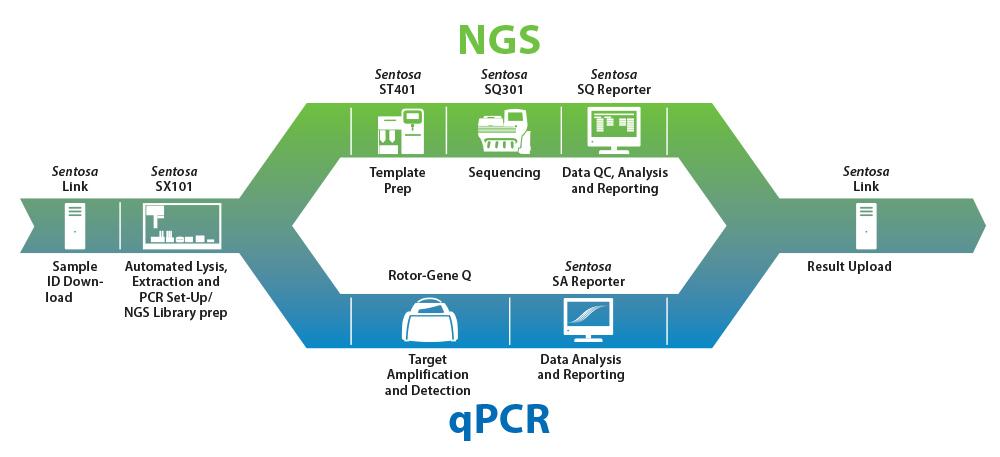 Ứng dụng giải trình tự gen thế hệ mới (NGS) trong sàng lọc trước sinh không xâm lấn - ảnh 2