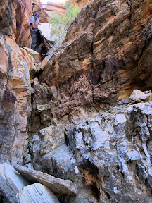Moderately difficult downclimbing into Spring Canyon