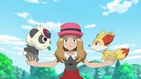 ¡Baila Pancham, encanta Fennekin! ¡¡El baile del mañana!! Pokémon XY