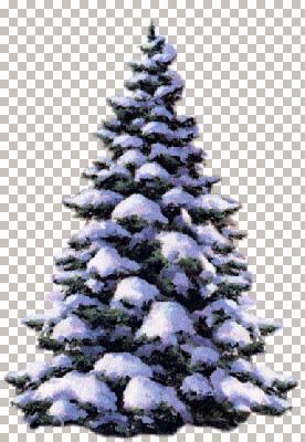 SnowCoveredTree EGS 12.20.02.jpg