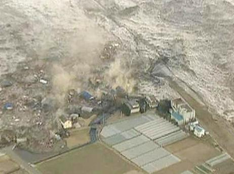 interesting facts about tsunami japan disaster