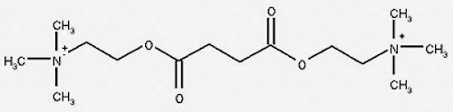 %252522Succinylcholine.jpg%252522.jpg