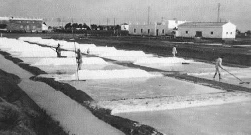 Extracción de sal en la salina Tres Amigos del Rio Arillo