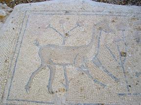הפסיפס של בית הכנסת נערן – Jericho Naaran synagogue