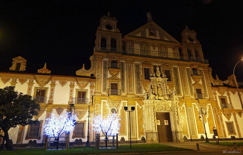 luces navidad, diputacion de córdoba, palacio de la merced, árboles iluminados, neón, córdoba, españa, navidad, festividad, decoración navideña