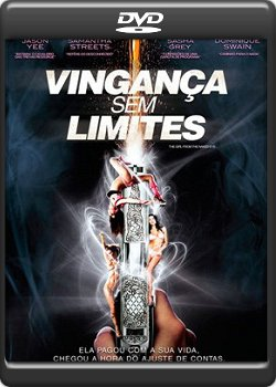 Download Vingança Sem Limites Dvdrip AVI Dual Audio RMVB Dublado
