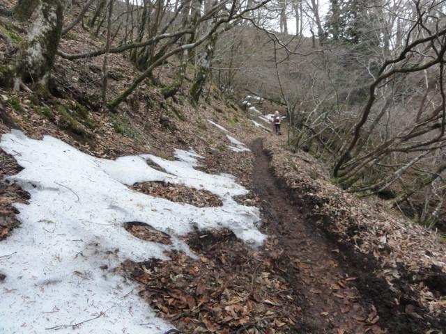 Izu trail journey 雪