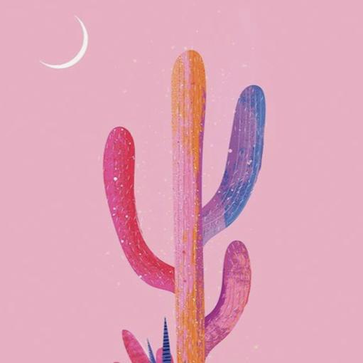 kaktus gersang picture