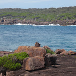 Looking across the entrance of Bittangabee Bay from the north (106531)