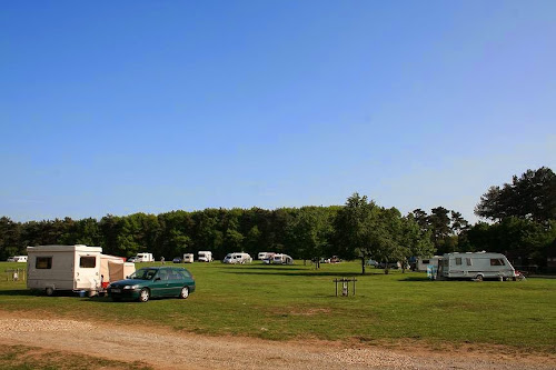 Forest Camping Ltd at Forest Camping Ltd