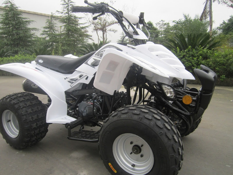 125cc Large Kids Sports Quad Bike ATV Right