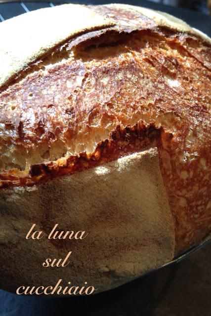 il pane integrale senza impasto - no knead bread
