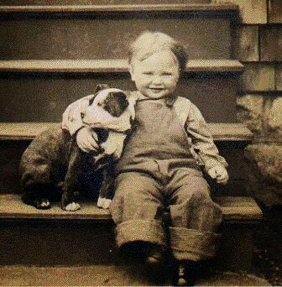 Um bebê e um filhote de Pit Bull
