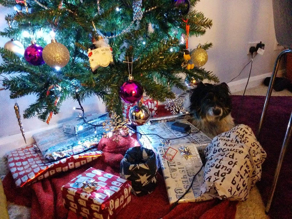 bruce under the christmas tree