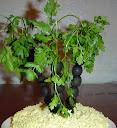 Оливковая пальма украшение для салата
