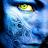 Kasun Chandima avatar image