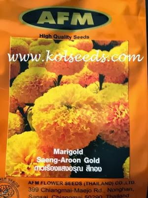 เมล็ดพันธุ์ดาวเรือง แสงอรุณ ดาวเรืองดอกสีเหลือทอง เหมาะสำหรับปลูกในฤดูหนาว