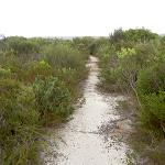 Sandy track down to Deer Pool (35108)