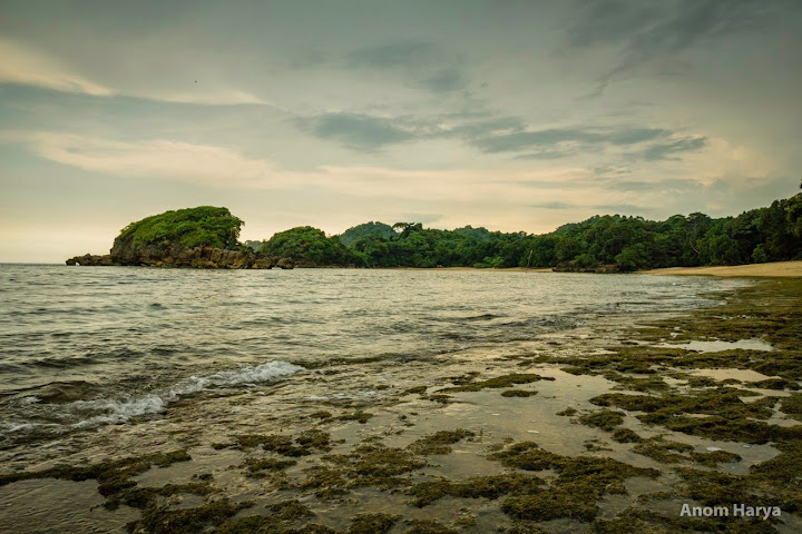 Komposisi pantai terdiri dari pasir dan batuan karang