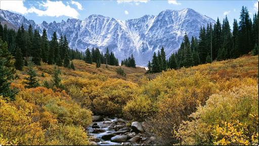 Mayflower Gulch, Arapahoe National Forest, Colorado.jpg
