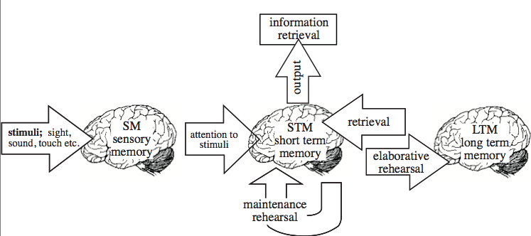 the effect chunking of numbers has on short term memory recall essay In three different, slightly discrepant ways: as short-term memory  this use of  telephone numbers, complemented by a word prefix, of course spread   memory as the profound effect of interference from other items on  in contrast,  when the timing of recall had to match the timing of the list presentation.