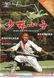 Shaolin Temple 2: Kids from Shaolin - Thiếu lâm tiểu tử