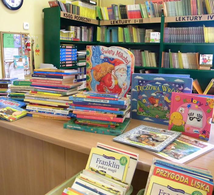 biblioteka mini1