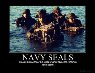Motivational Posters Navy Seals
