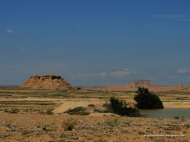 passeando - Passeando pelo norte de Espanha - A Crónica - Página 3 DSC05581