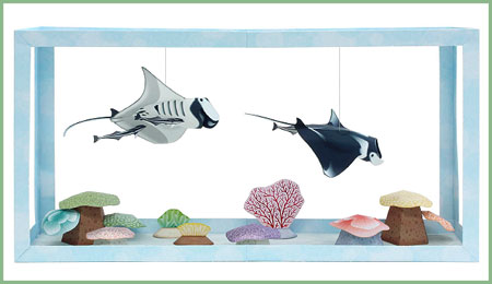 Aquarium Papercraft Manta Ray Remora