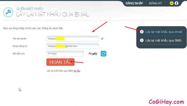vào trang lấy lại mật khẩu game đột kích, nhập đầy đủ thông tin
