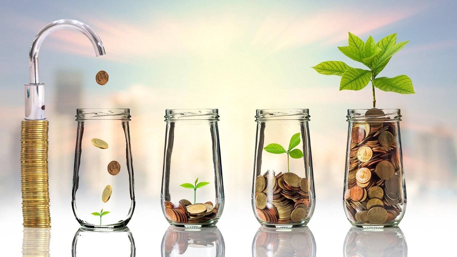Giai đoạn tài chính của cuộc đời
