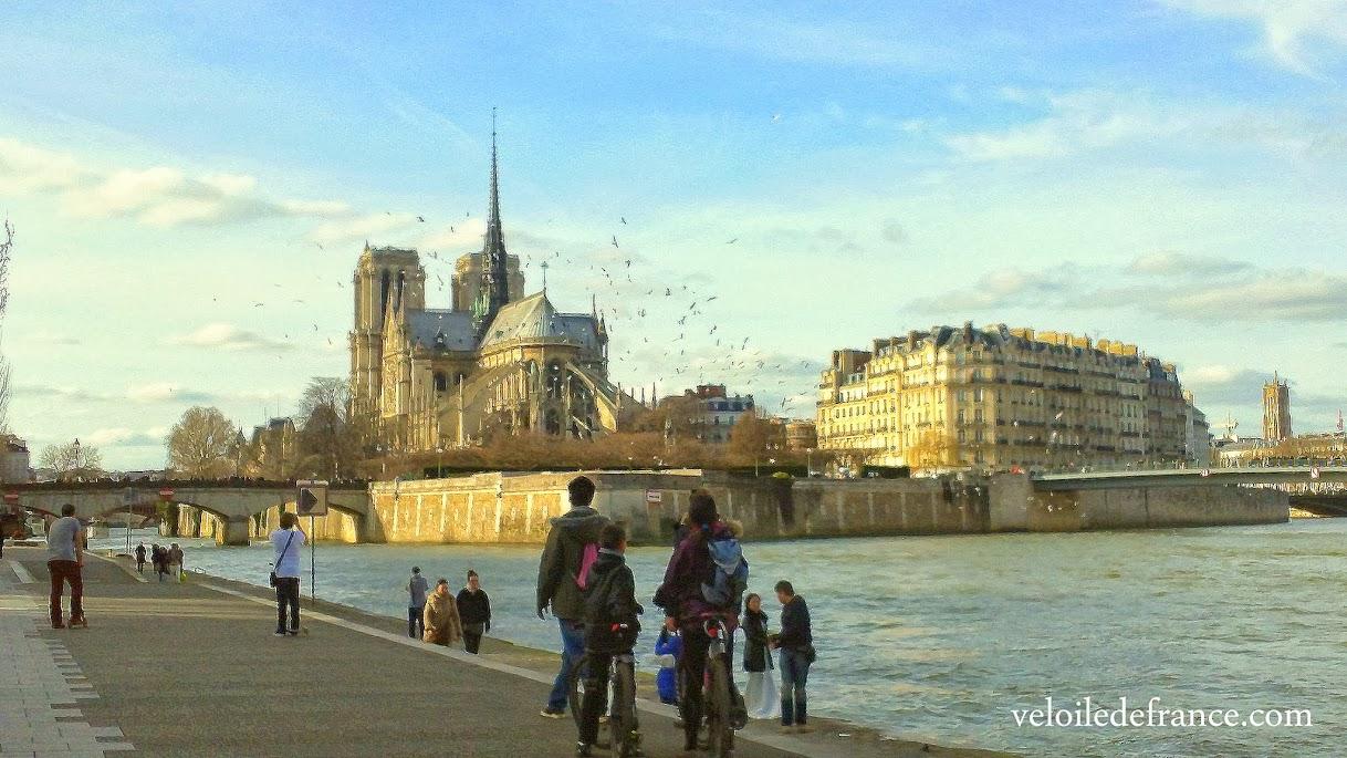 Vue sur Notre Dame depuis les berges de Seine - e-guide balade à vélo de Bercy Village à Notre-Dame par veloiledefrance.com