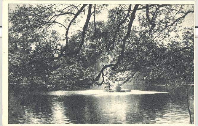 Cismigiu Lake