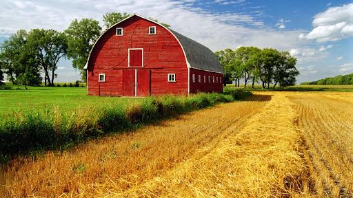 Red Barn, Myrtle, Manitoba, Canada.jpg