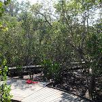 Boardwalk (118873)