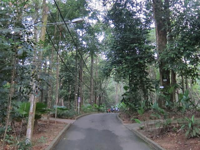 Taman-Botani-Melaka-Botanical-Garden