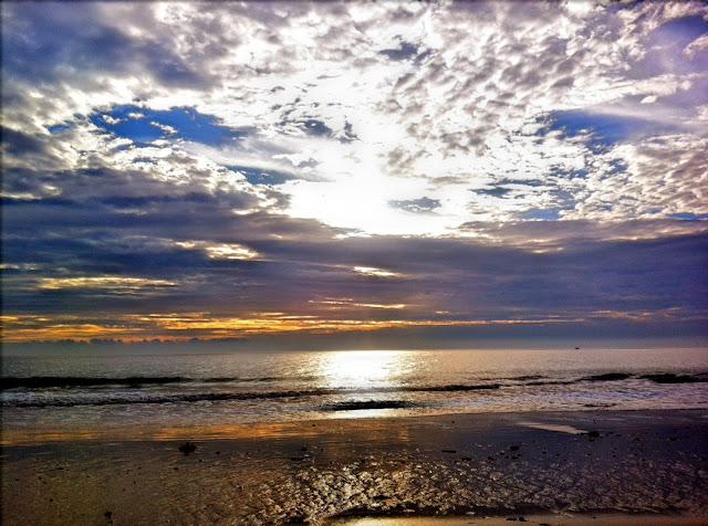 Califia Beach