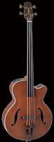 Takamine Fretless Electro-Acoustic Bass