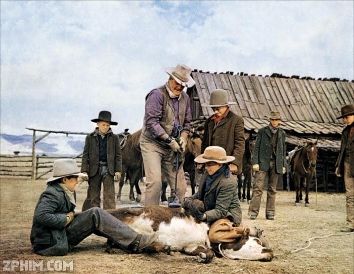 Ảnh trong phim Cao Bồi Nhí - The Cowboys 2