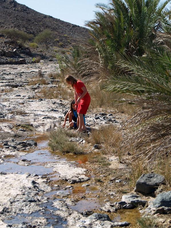 Wadi water