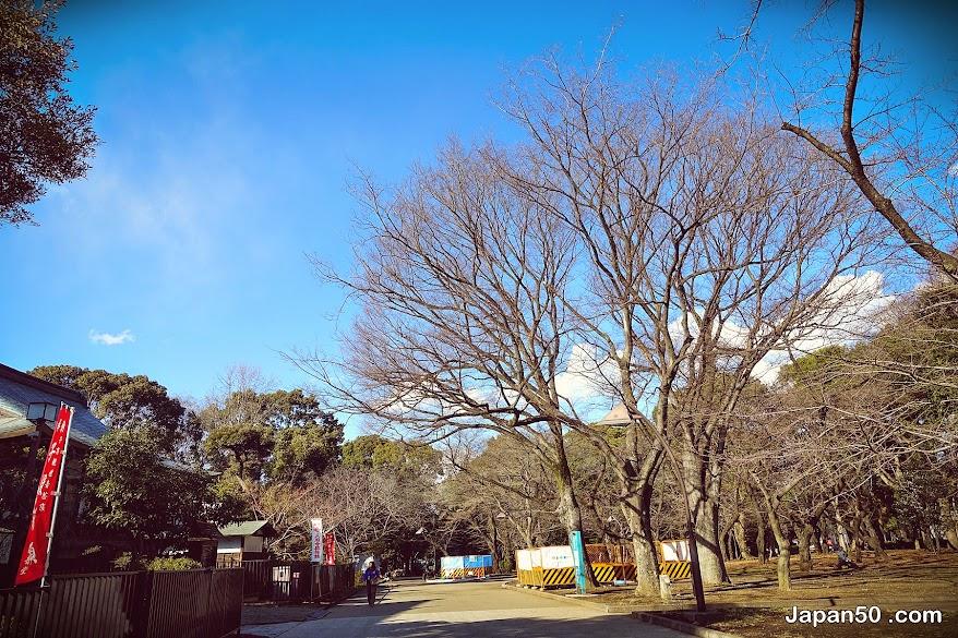 ีueno park